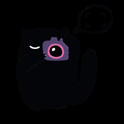cinecat3